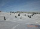 Winter 2013